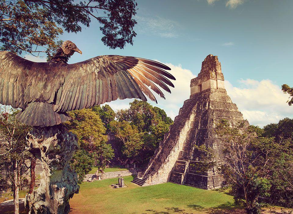 guatemala-peten-tikal-maya-pyramide