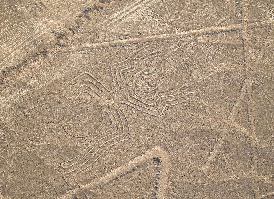 peru-wueste-nazca-linien-spinne